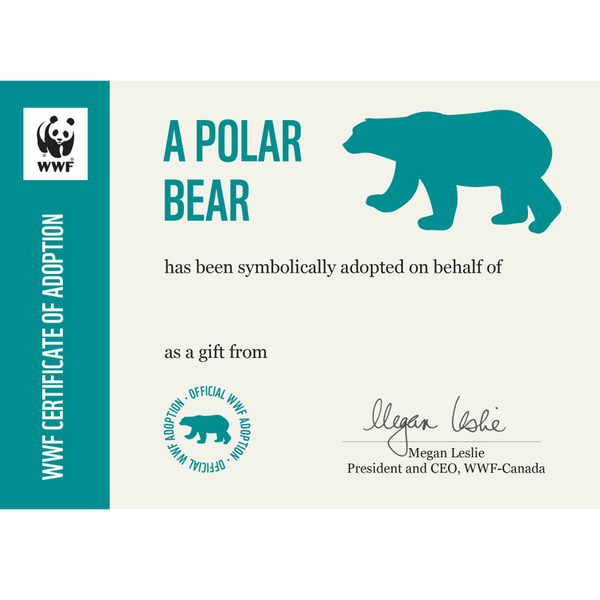 Polar bear adoption certificate