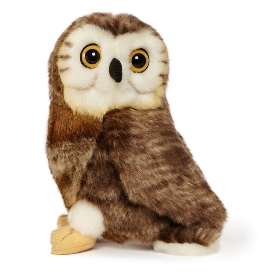 Saw-whet owl plush