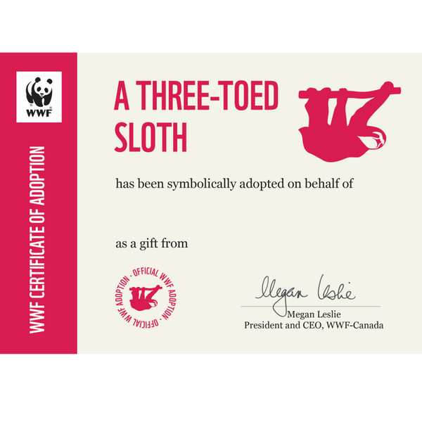 Three-toed sloth adoption certificate