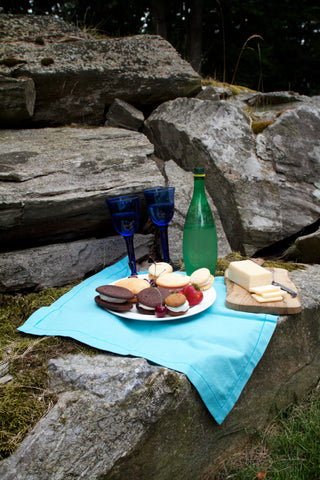 a picnic with whoopie pies