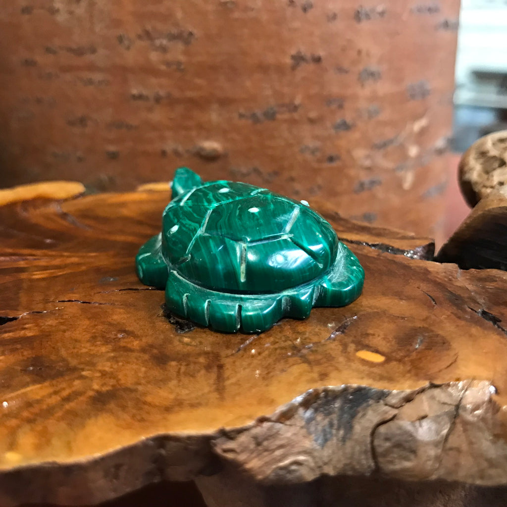 Zuni Turtle Fetish Made with Malachite Made by the Boone Family TC19