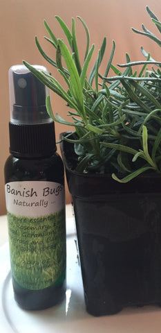 Banish Bugs! Naturally ...