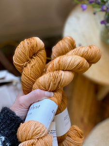 Pumpkin Spice - Merino/Nylon Fingering Weight Yarn