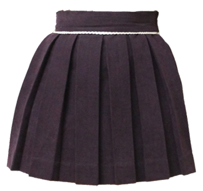 Sugar Plum Sweet Pleat Skirt