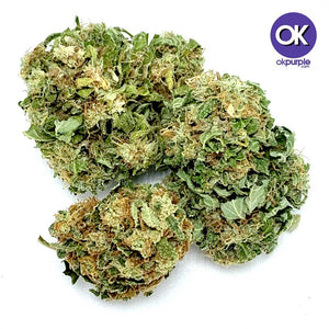 Jack Herer (Greenhouse - Premium)