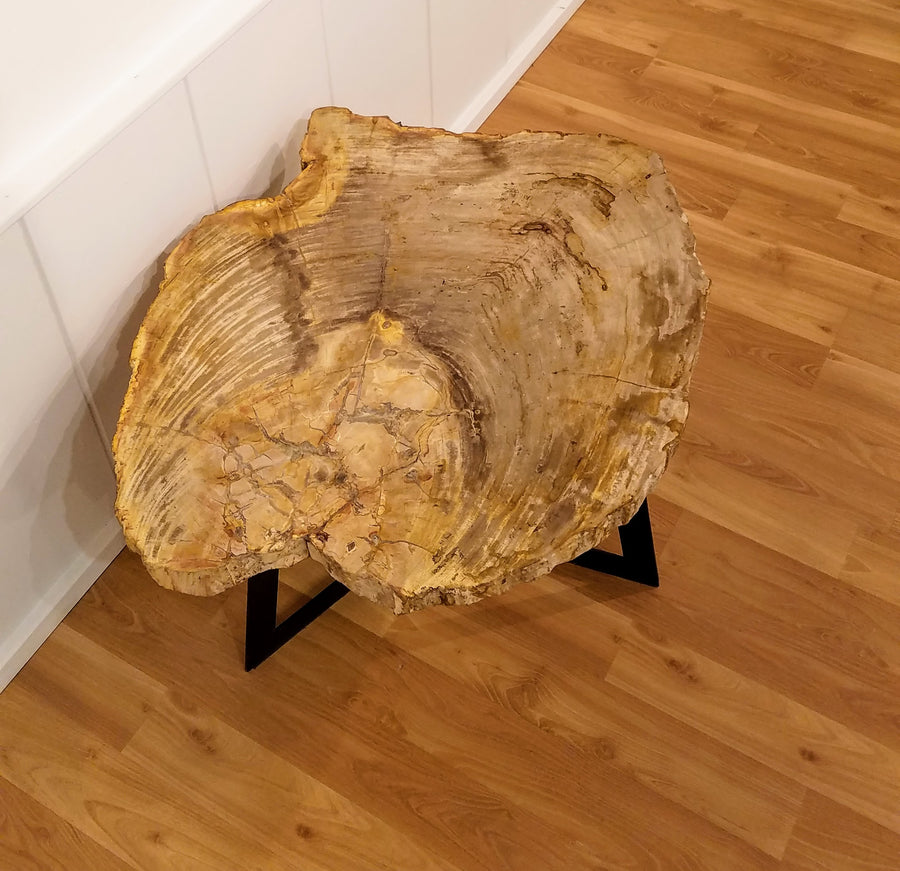 LIVE EDGE PETRIFIED TABLE