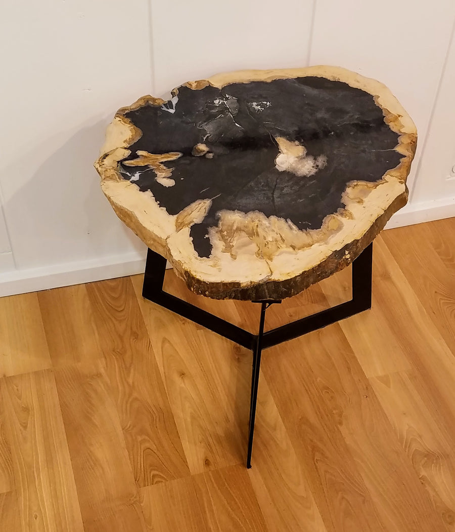 PETRIFIED WOOD LIVE EDGE COFFEE TABLE