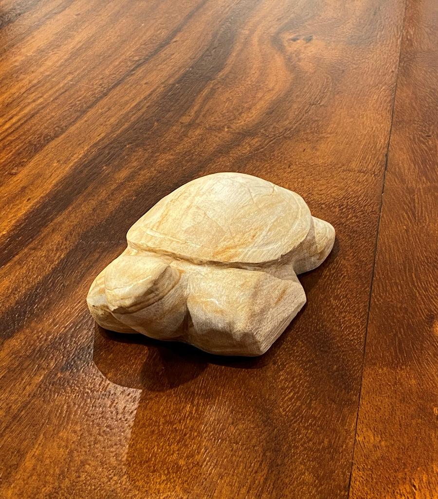 PETRIFIED WOOD CARVED TURTLE