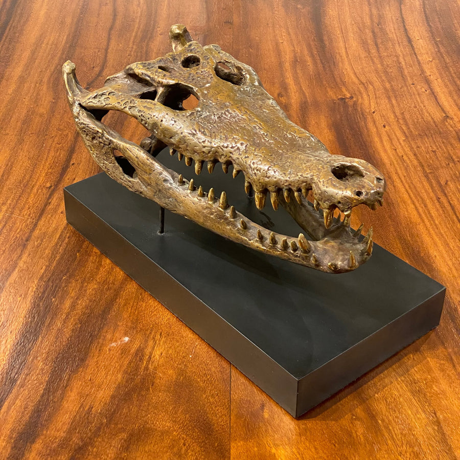 BRONZE CROCODILE HEAD