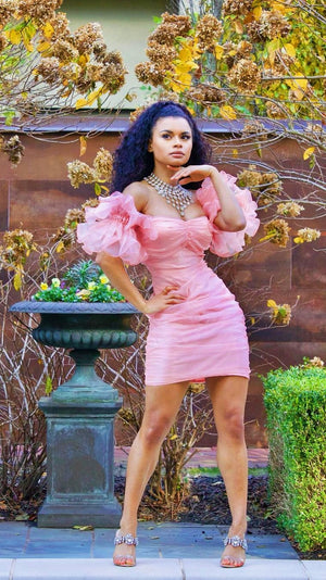 Pink Organza Ruffle Sleeve Dress