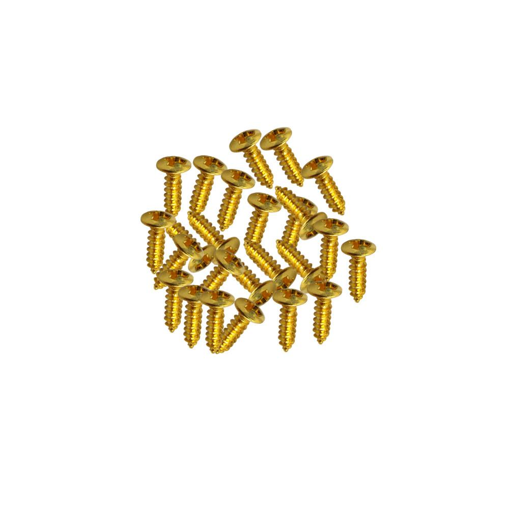 FLEOR 25PCS/Pack Bass Guitar Pickguard Screws | iknmusic