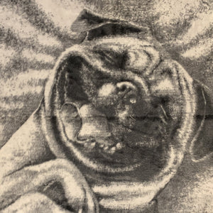 Pug Face Pet Blanket