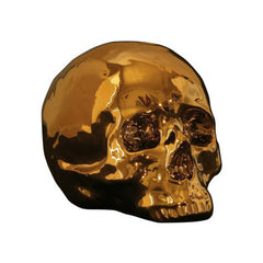"""Goldies"" Skull"