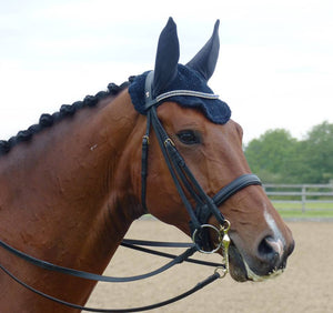 Heliotrope and clear browband