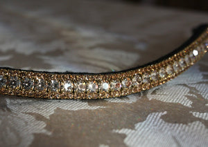 Honey and light colorado browband