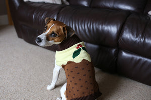 Christmas Pudding Jumper
