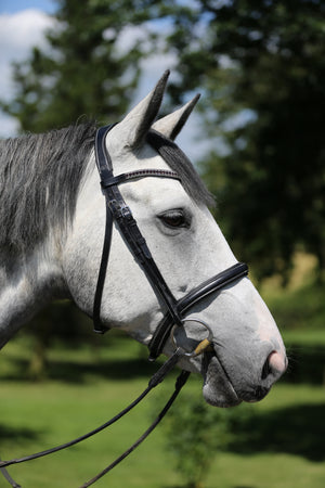 Black snaffle bridle with combi noseband