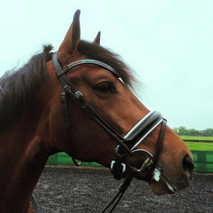 Rolled leather patent snaffle bridle *browband not included*