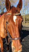 Light colorado, honey and smoke topaz megabling curve browband