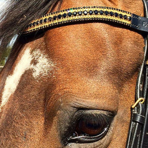 Jet, light colorado and jet megabling curve browband