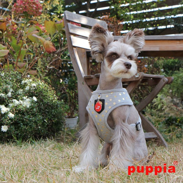 Grey Modern Dotty Harness