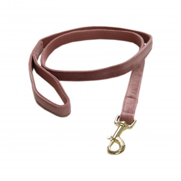 Kentucky dogwear velvet Lead