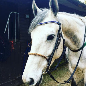 Sapphire and clear browband