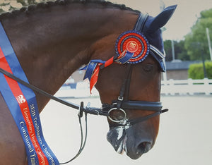 Sapphire, clear and montana megabling curve browband