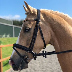 Smoke topaz and light colorado browband