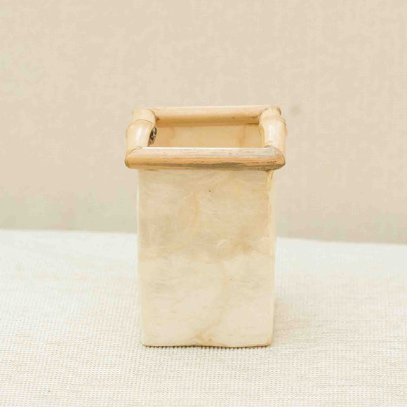 Crushed shell Pencil Holder