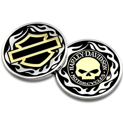 Golden Skull/ Bar & Shield Challenge Coin 8005092