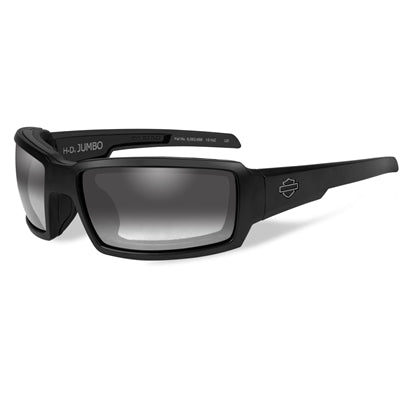 Jumbo Light Adjusting Smoke Grey Lenses / Matte Black Frame