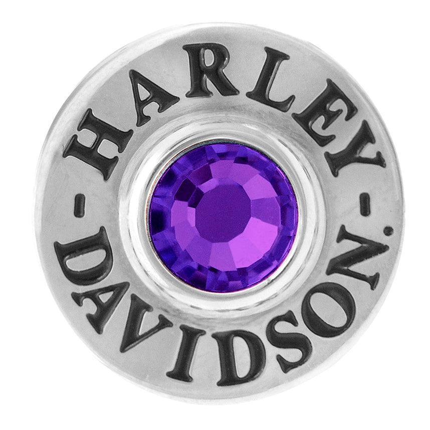 Silver Tone Round Rally Charm with Purple Stone