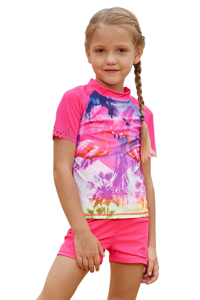 Swimsuitsnova Multicolor Pink Flamingo Shirt And Short Kid Girls Tankini Set Short Sleeves Round Neck Two Piece Swimsuits Girls Bathing Suit