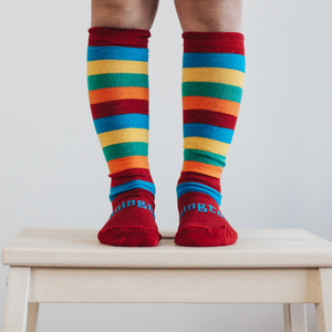 Lamington Merino knee high socks - Scooter