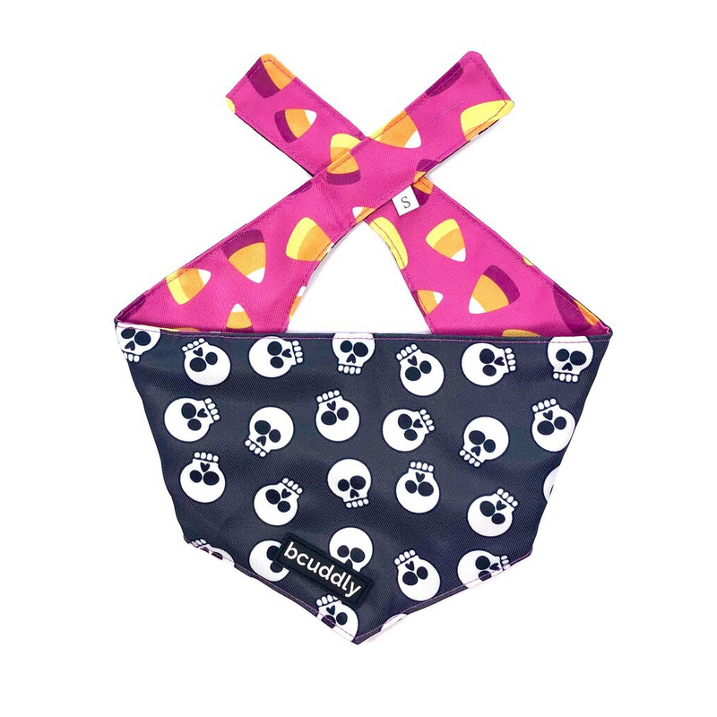 Dog bandana - Treat or Treat (Halloween)