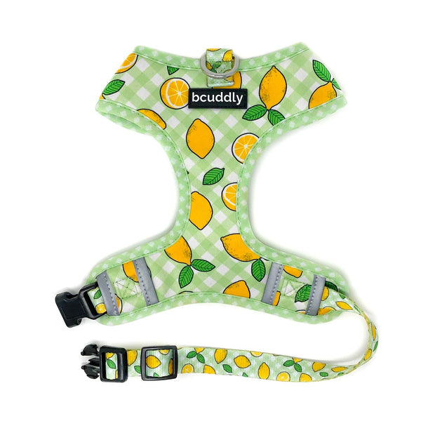 Control Dog Harness - Lemons