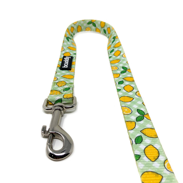 Dog Leash - Lemons (6ft)