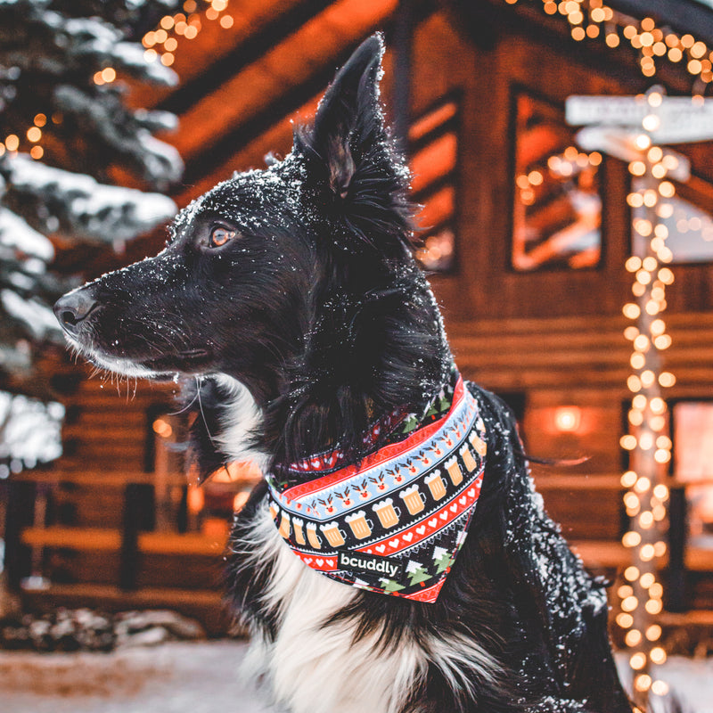 Dog bandana - Festive Feeling