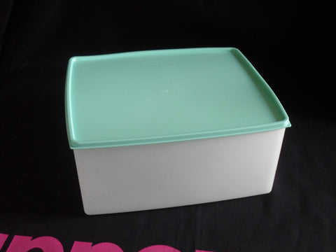 Freezer Rectangle 6L - Mint ONE LEFT