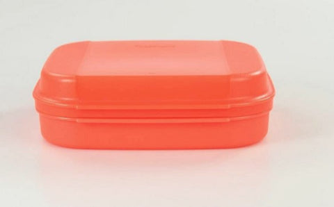 Slim Healthy Snack Box - Neon Orange