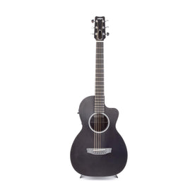 Rainsong P12 12-Fret Parlor Acoustic Guitar, 13612