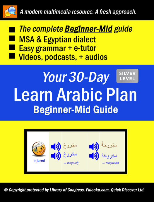 #4 Arabic (BEGINNER-MID)