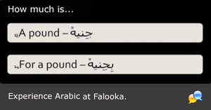 #11 Arabic (ADVANCED-LOW) - falooka
