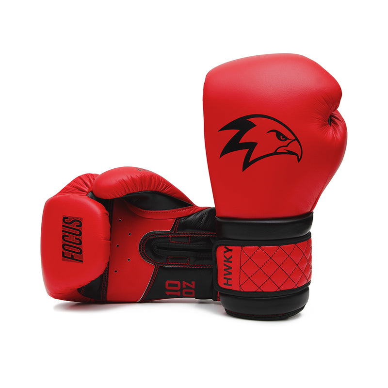 Focus Boxing Gloves | Black Cardinal