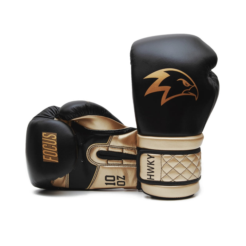 Focus Boxing Gloves | Onyx Gold