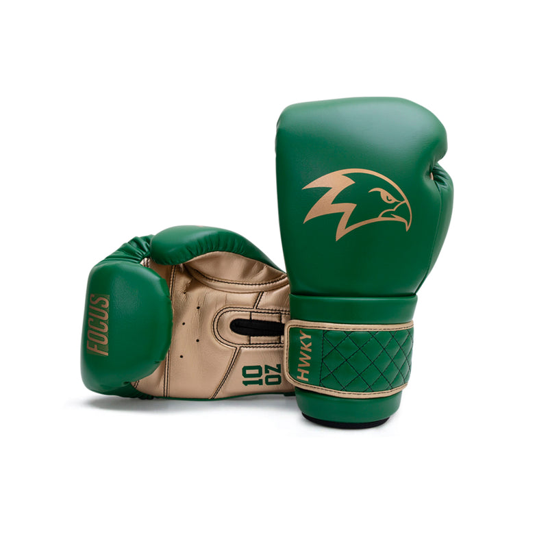 Focus Boxing Gloves | Golden Troops