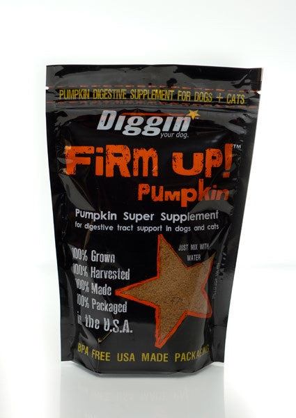 Diggin' Your Dog - Firm Up!