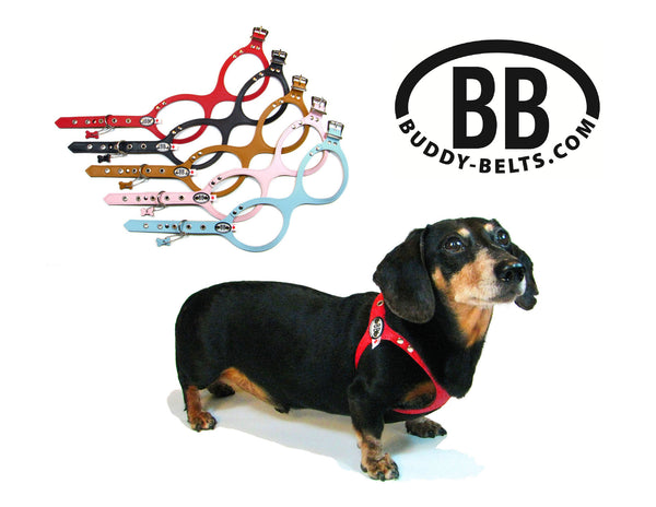 Buddy Belt Leather Dog Harness – The Green Spot