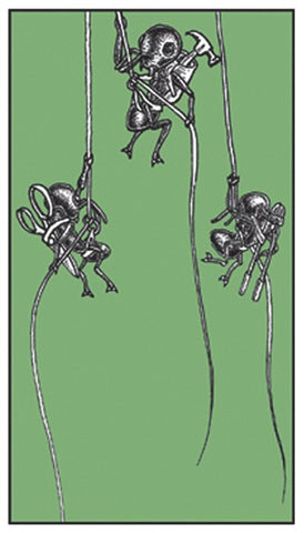 Ants Rappelling